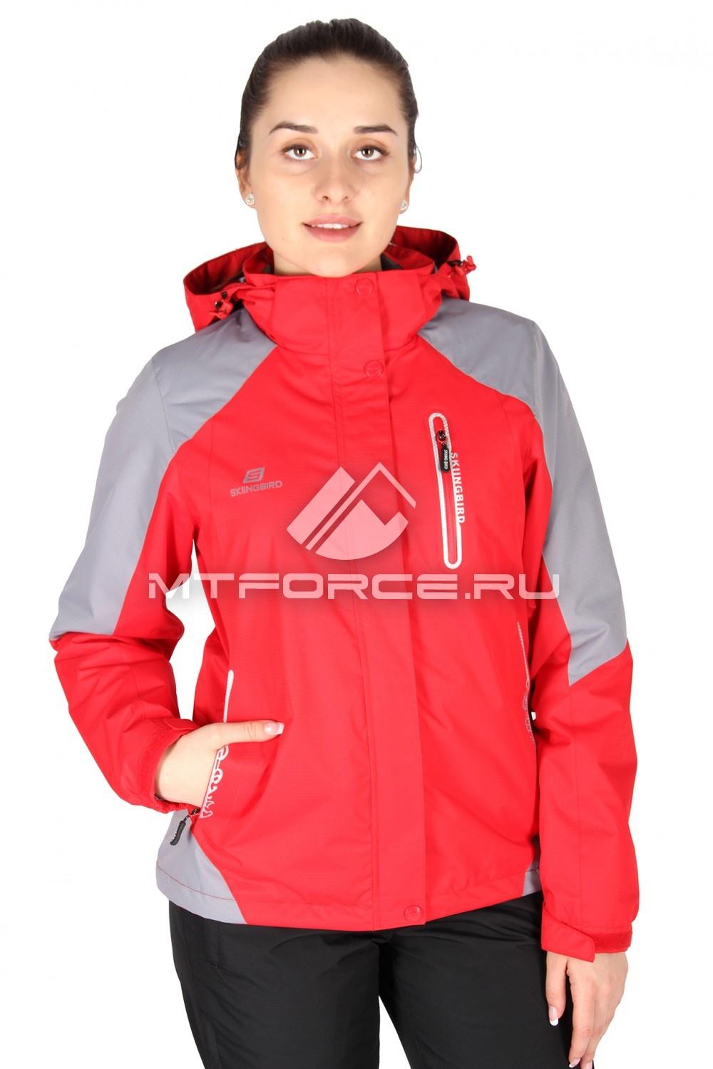 Купить                                  оптом Куртка спортивная женская весна красного цвета 1610Kr