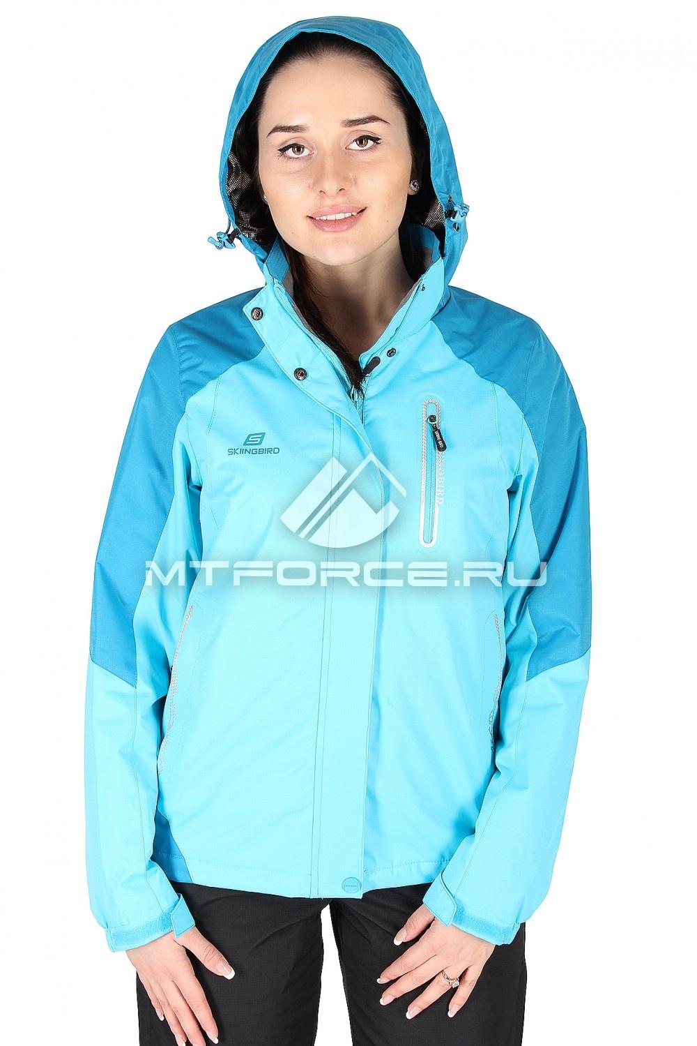 Купить                                  оптом Куртка спортивная женская весна синего цвета 1610S