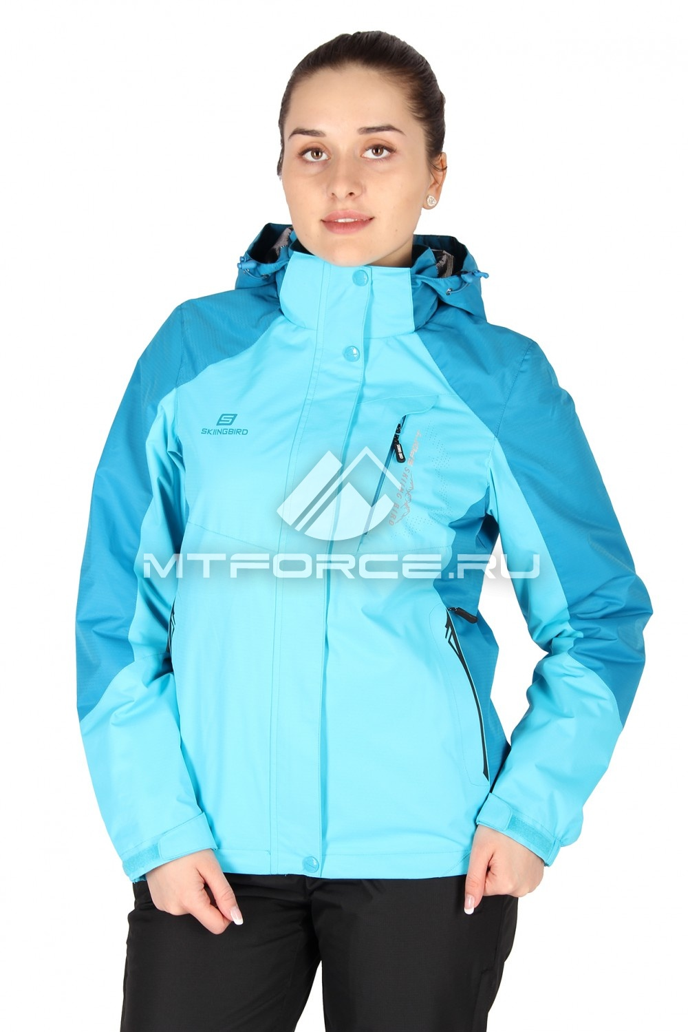 Купить оптом Куртка женская весна синего цвета 1612S