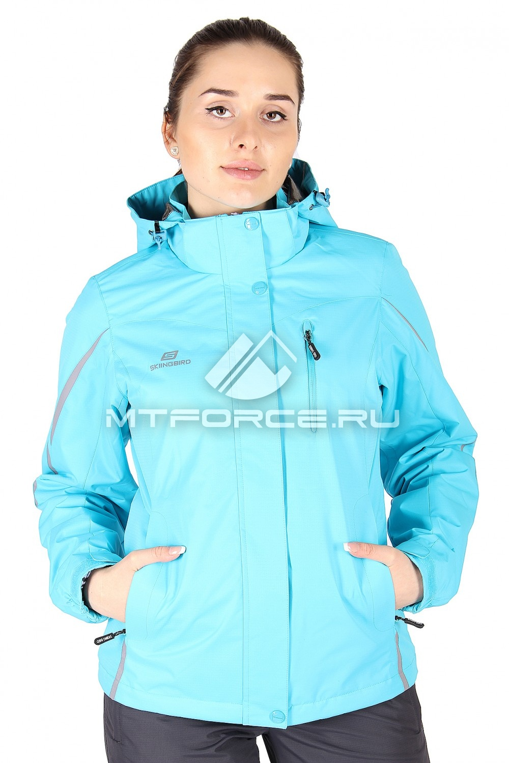 Купить                                  оптом Куртка спортивная женская весна голубого цвета 1617Gl