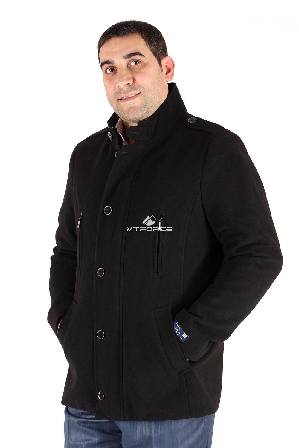 Купить                                  оптом Полупальто мужское черного цвета Кс-24Ch в Санкт-Петербурге
