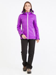 Спортивный костюм женский осенний весенний softshell фиолетового цвета купить оптом в интернет магазине MTFORCE 019077F
