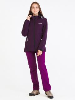 Спортивный костюм женский осенний весенний softshell темно-фиолетового цвета купить оптом в интернет магазине MTFORCE 019077TF