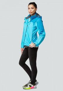 Купить оптом женскую осеннюю весеннюю спортивную куртку серого цвета в интернет магазине MTFORCE 1821Gl