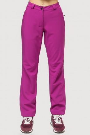 Купить оптом брюки женские из ткани softshell фиолетового цвета 1851F в интернет магазине MTFORCE.RU