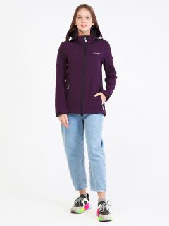 Купить оптом женскую осеннюю весеннюю ветровку softshell темно-фиолетового цвета в интернет магазине MTFORCE 19077TF