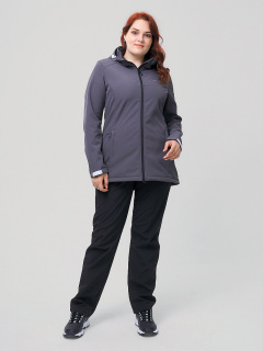 Женский осенний весенний костюм спортивный из ткани softshell большого размера серого цвета купить оптом в интернет магазине MTFORCE 02003Sr
