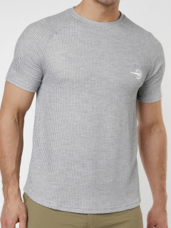 Купить мужские футболки оптом от производителя в Москве 221030Sr