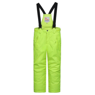 Горнолыжные брюки подростковые для девочки зимние салатового цвета купить оптом в интернет магазине MTFORCE 8735Sl