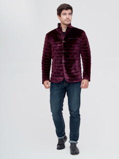 Купить оптом мужскую демисезонную велюровую  куртку фиолетового цвета в интернет магазине MTFORCE 93351F