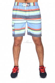 Купить оптом спортивные шорты голубого цвета S11Gl в интернет магазине MTFORCE.RU