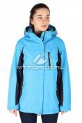 Интернет магазин MTFORCE.ru предлагает купить оптом куртка спортивная женская батал синего цвета 097S по выгодной и доступной цене с доставкой по всей России и СНГ