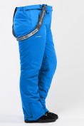 Оптом Брюки горнолыжные женские большого размера голубого цвета 1878Gl в  Красноярске, фото 7