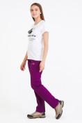 Оптом Брюки женские из ткани softshell фиолетового цвета 1926F в Казани