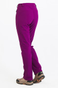 Оптом Брюки женские из ткани softshell фиолетового цвета 1926F в Казани, фото 6