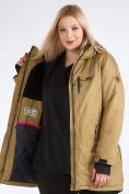 Оптом Куртка парка зимняя женская большого размера горчичного цвета 19491G в Екатеринбурге, фото 12