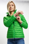 Оптом Стеганная куртка зеленого цвета 33315Z в Екатеринбурге, фото 10