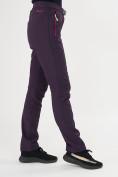 Оптом Брюки softshell темно-фиолетового цвета 371TF в Екатеринбурге, фото 13