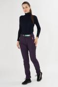 Оптом Брюки softshell темно-фиолетового цвета 371TF в Екатеринбурге, фото 3