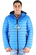 Интернет магазин MTFORCE.ru предлагает купить оптом куртка мужская синего цвета 1618S по выгодной и доступной цене с доставкой по всей России и СНГ